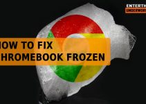 Fix Chromebook Frozen